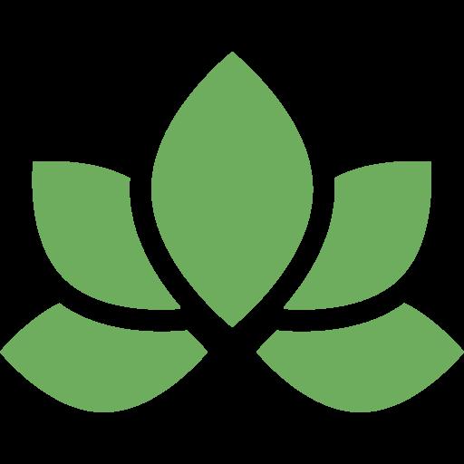 Alternative Heilpraktiken mit Asiatischem Touch